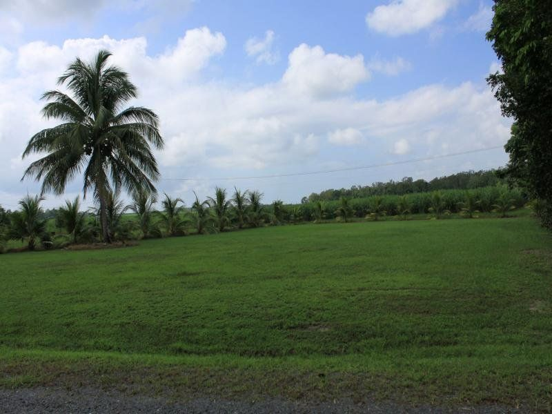 Lot 6 Esplanade (McDowall Lane), Daintree QLD 4873, Image 2