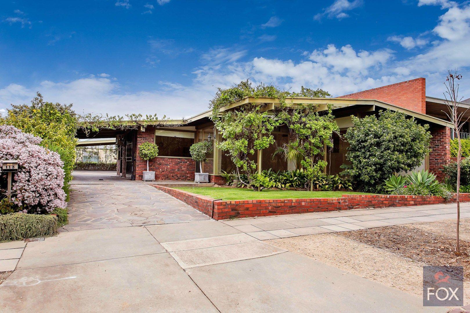 113 Kingston Terrace, North Adelaide SA 5006, Image 1
