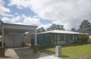 Picture of 66 Mickleton Terrace, Bassendean WA 6054
