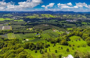 Picture of 985 Hinterland Way, Bangalow NSW 2479