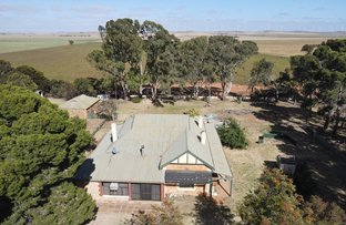 Picture of 9789 Barrier Hwy, Hallett SA 5419
