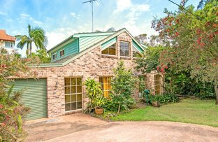 18 Travers Road, Curl Curl NSW 2096