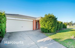 Picture of 35 Oak Avenue, Longwarry VIC 3816
