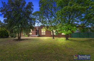 Picture of 12 Speke Street, Raywood VIC 3570