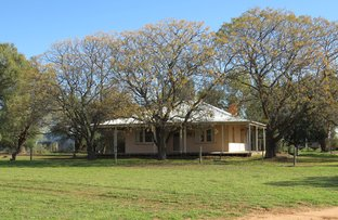 Picture of 1271 Jerilderie Road, Berrigan NSW 2712
