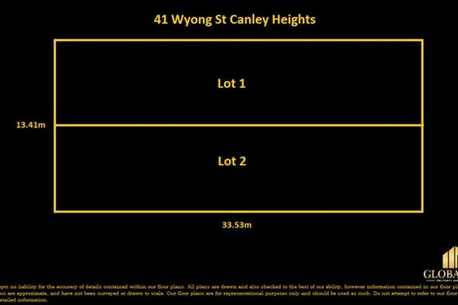 Picture of 41 Wyong Street, CANLEY HEIGHTS NSW 2166