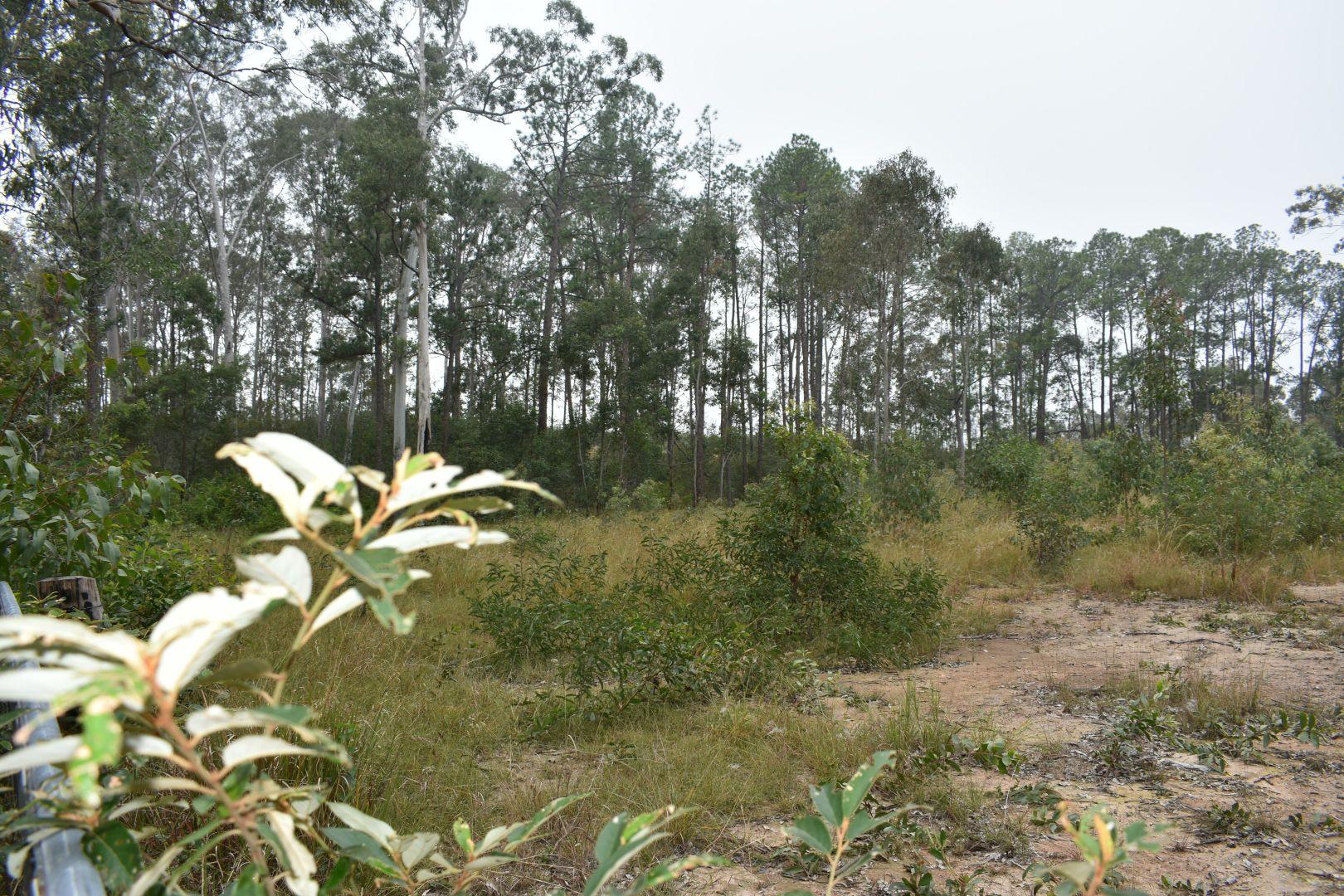 Glenbar Road, Aramara QLD 4620, Image 1