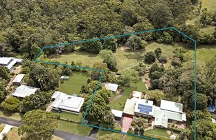 Picture of 33 Mary Cairncross Ave, Maleny QLD 4552