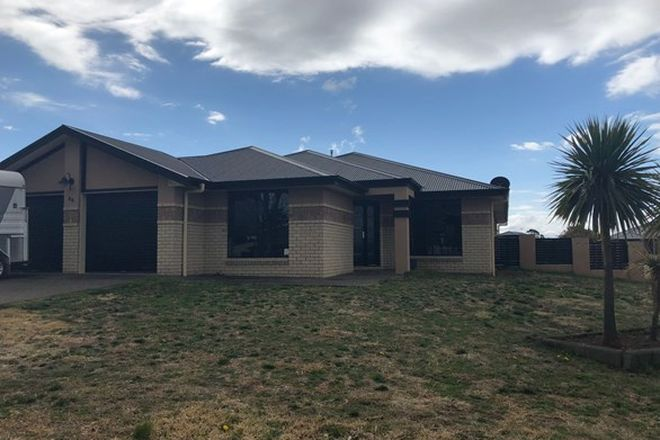Picture of 40 Link Road, ARMIDALE NSW 2350