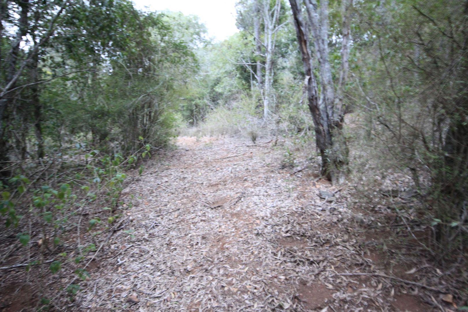 508 Malar Road, Booie QLD 4610, Image 1