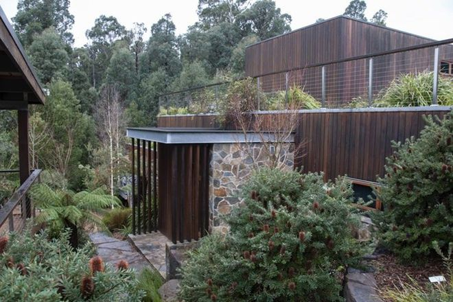 Picture of 55 Falls Road, MARYSVILLE VIC 3779