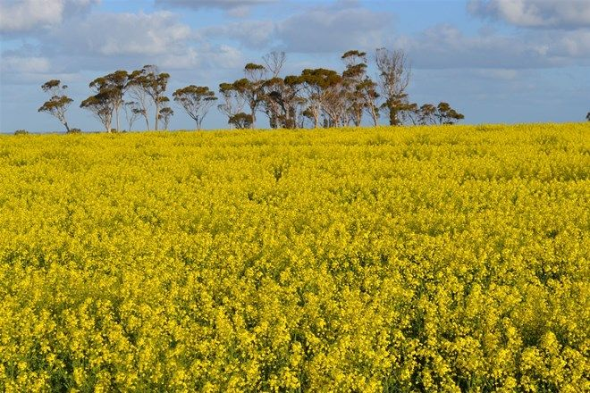 Picture of . 'Greyhome', CUNDERDIN WA 6407