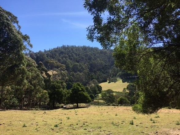 Lot 2 Nicklasons Road, Pyengana TAS 7216, Image 0