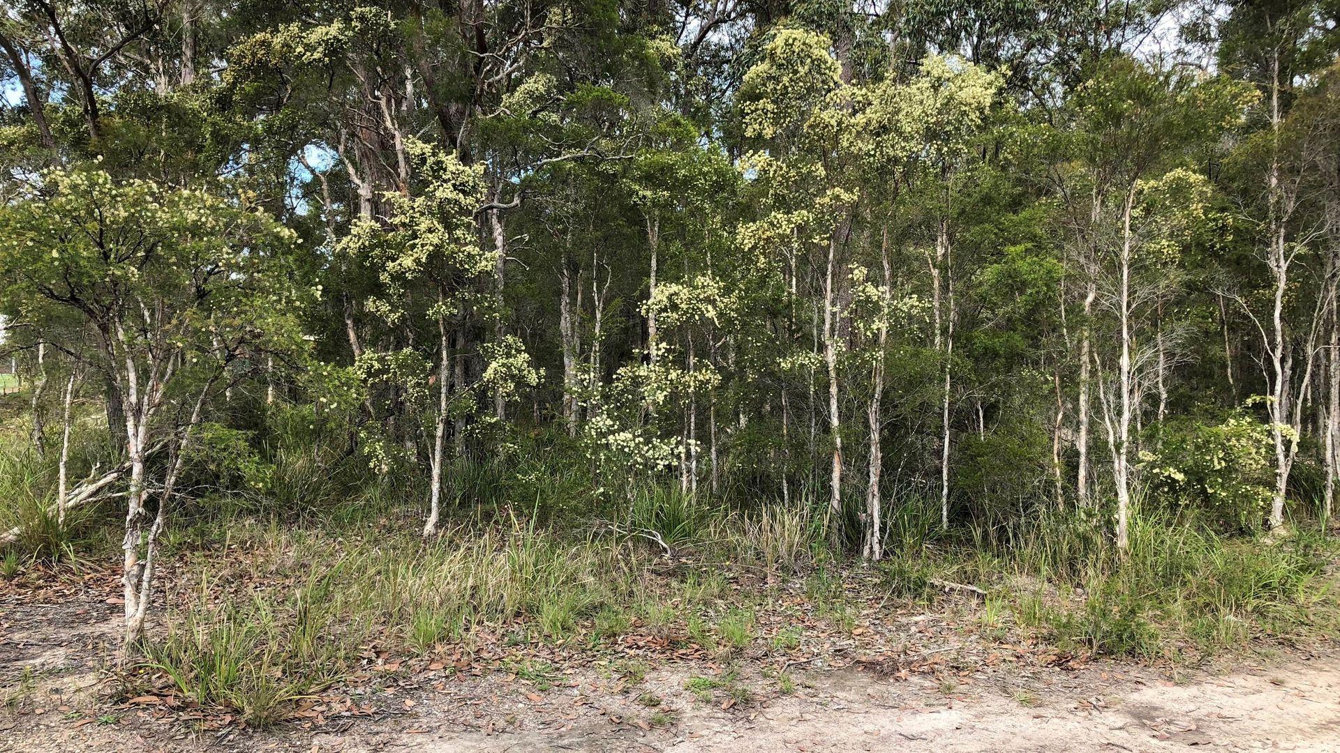 11 Boonara Bend, Karuah NSW 2324, Image 2