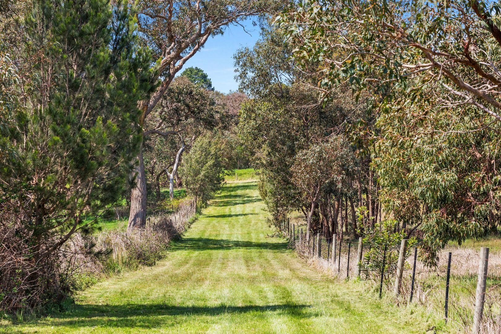 F E N D I   8 Boundary Road, Dromana VIC 3936, Image 1