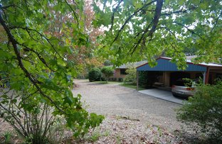 Picture of 55 Cobah Road, Arcadia NSW 2159