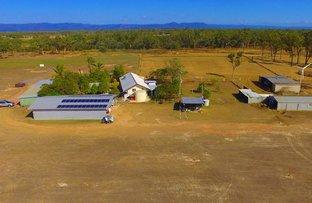 Picture of 2338 Woodstock Giru Road, Majors Creek QLD 4816