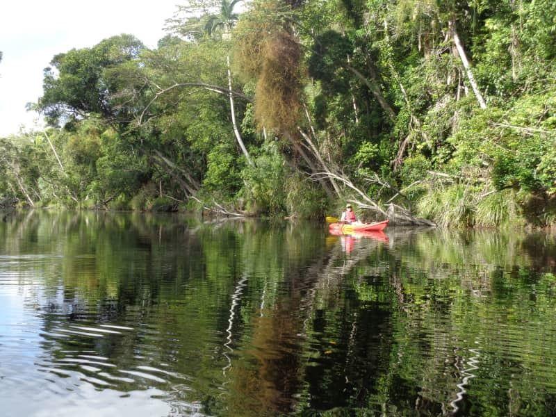 218 Yaxleys Road - Byfield Cabins on Waterpark Creek, Byfield QLD 4703, Image 2