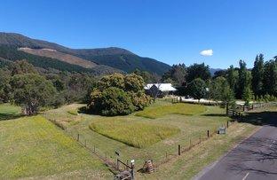 Picture of 8 Morses Creek Road, Wandiligong VIC 3744