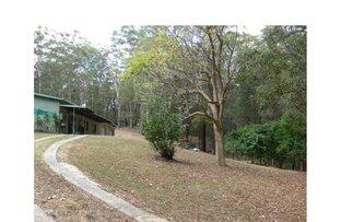 Picture of 575 Bagotville Road, Meerschaum Vale NSW 2477