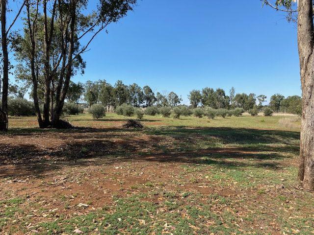 981 Stonelands Road, Stonelands QLD 4612, Image 0