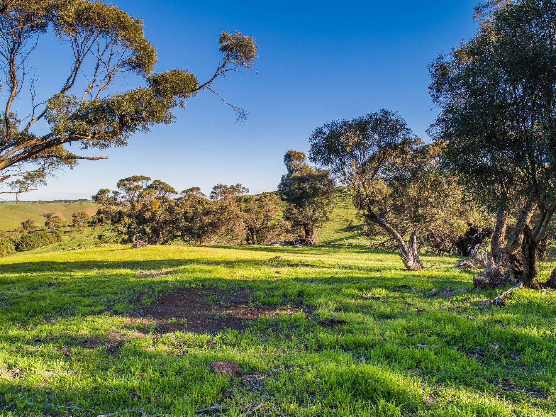 Lot 103 Back Callington Road, Mount Barker Springs SA 5251, Image 1