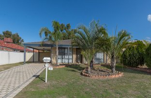 Picture of 11 Mangrove cct, Banksia Grove WA 6031