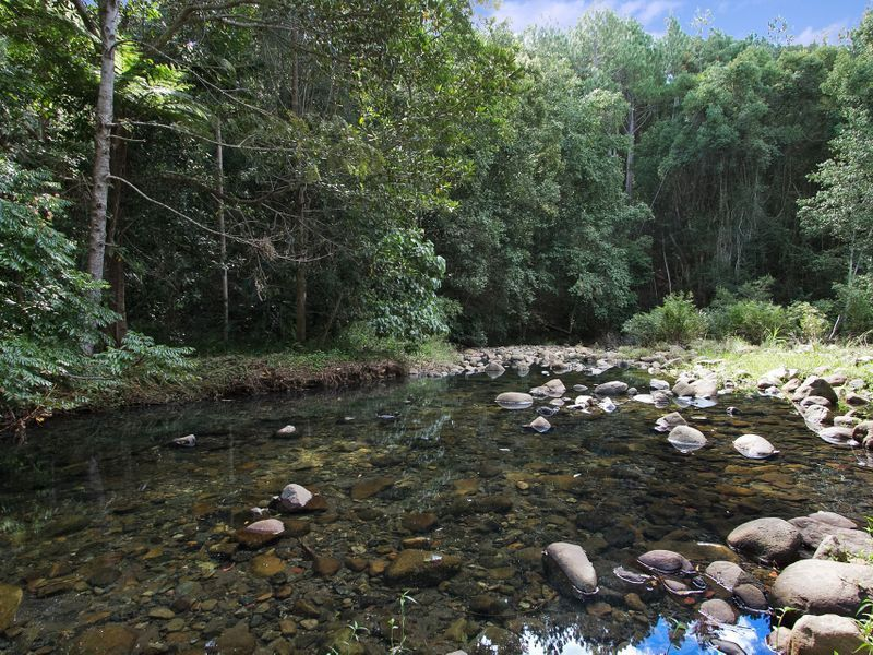 134 Mt Warning Rd, Uki NSW 2484, Image 0