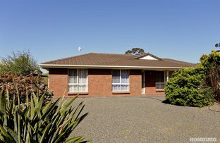 Picture of 2A Mader Court, Nuriootpa SA 5355