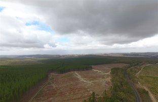 "Picture of ""Gunn"" Glenelg Highway, Linton VIC 3360"