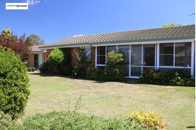 Picture of 10 Plant Street, STANTHORPE QLD 4380