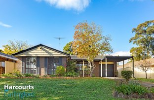 Picture of 55 Pendley Crescent, Quakers Hill NSW 2763