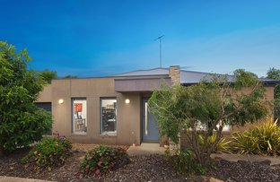 Picture of 1/86 Fogarty Avenue, Highton VIC 3216