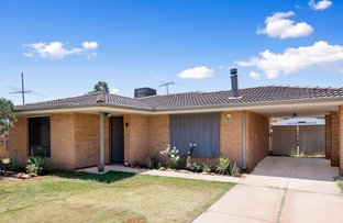 Picture of 7 Starlight Place, South Kalgoorlie WA 6430