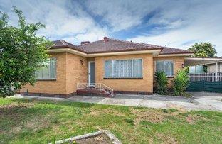 Picture of 134 Tamarind Street, North Albury NSW 2640