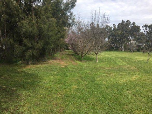 Lot 50 Wakefield Street, Auburn SA 5451, Image 1