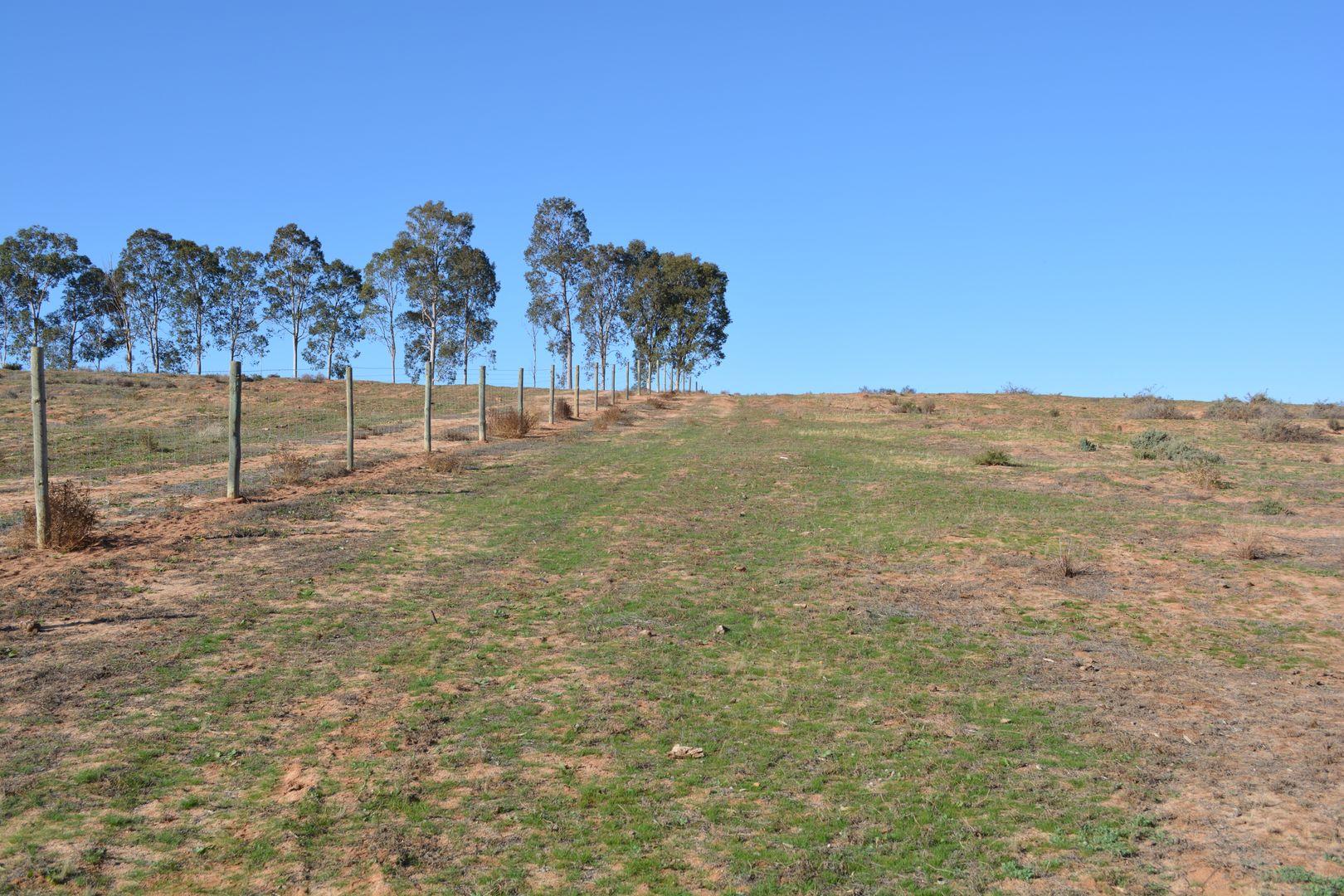 114 Bonnie Doon Road, Monak NSW 2738, Image 1