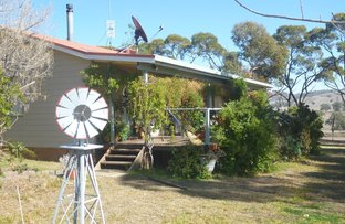 Picture of Camelon 320 Wisemans Arm Road, Attunga NSW 2345