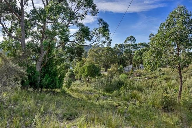 Picture of 46 Ferntree Road, EAGLEHAWK NECK TAS 7179