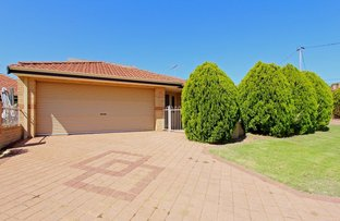 Picture of 230 Flamborough St, Doubleview WA 6018