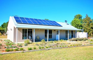 316 Jacks Creek Road, Narrabri NSW 2390