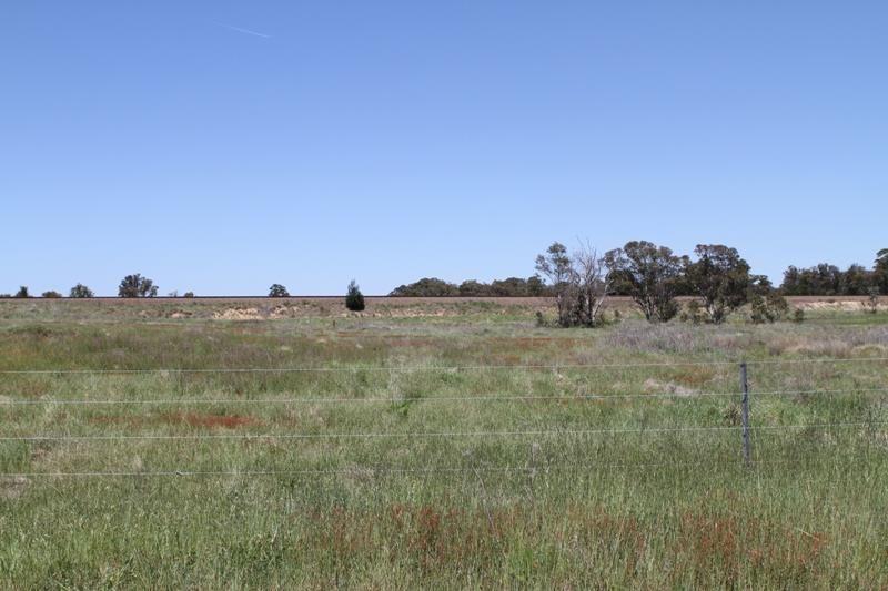 Lots 1 & 2 Stoney Creek Rd, Marulan NSW 2579, Image 2