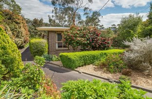 3 Commercial Road, Mount Evelyn VIC 3796