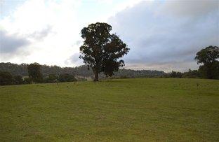 69 Bago Forest Road, Tumbarumba NSW 2653