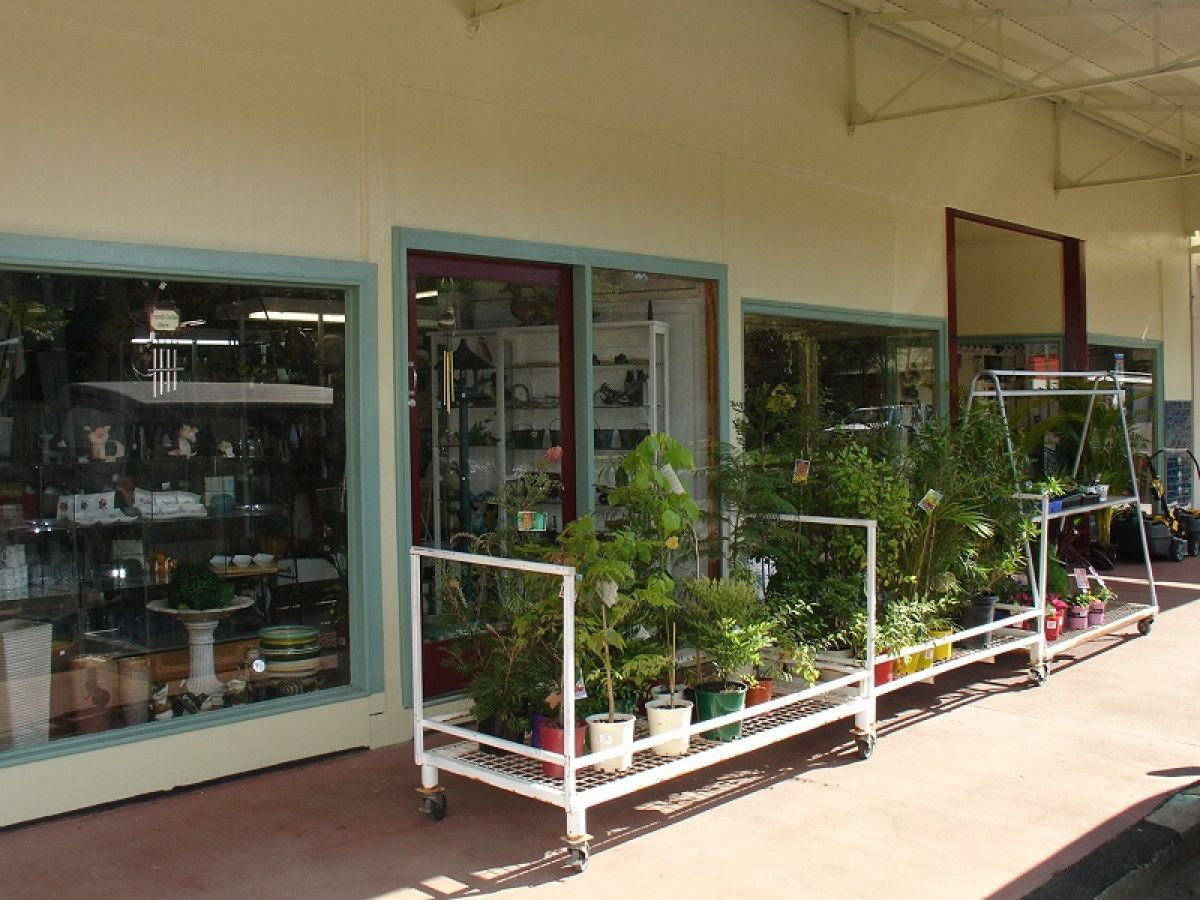 25 Sandilands Street, Bonalbo NSW 2469, Image 1