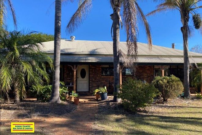 Picture of 546 Wilsons Road, GORDONBROOK QLD 4610