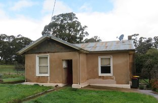 Picture of 39 Tantalla St, Wedderburn VIC 3518