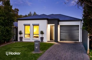 Picture of 10a Irene Avenue, Hope Valley SA 5090