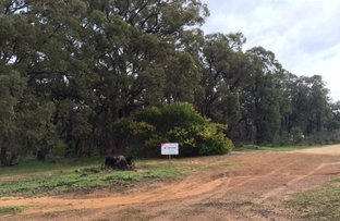 Picture of 58 Lyons Rd, Waroona WA 6215