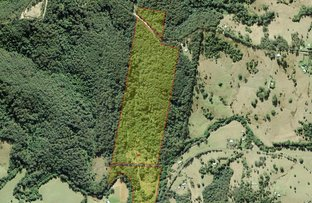 Picture of 210 North Branch Rd, Upsalls Creek NSW 2439